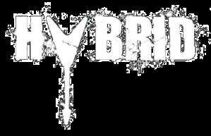 Hybrid logo 1